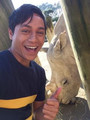 Jah & a rhino!