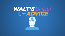 Walt's Shed Of Advice