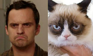 Nick Miller vs Grumpy Cat on New Girl