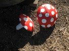Concrete Toadstools