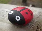 Pebble Ladybug