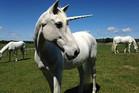 Cadbury Dream Factory Unicorn