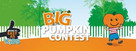 Mitre 10 Big Pumpkin Contest